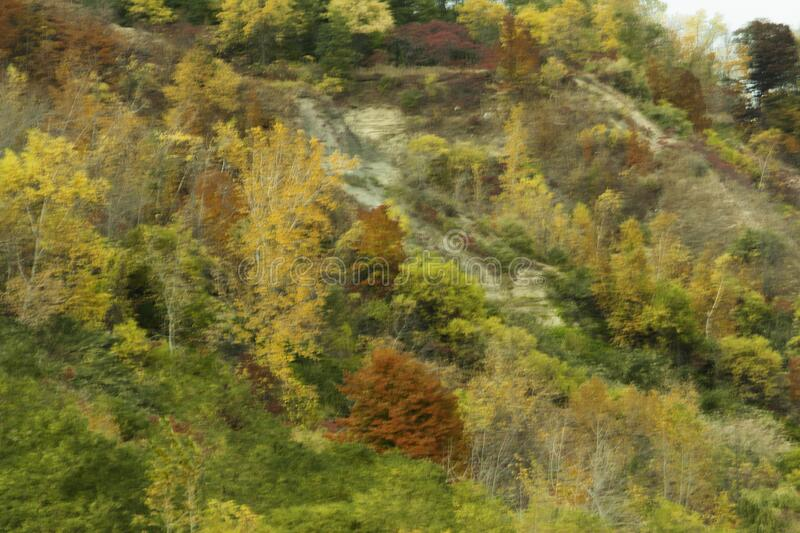 Autumn colors At The Scarborough Bluffs. This rugged towering escarpment, filled with orange, yellow, green and red is known as the Scarborough Bluffs. The stock image