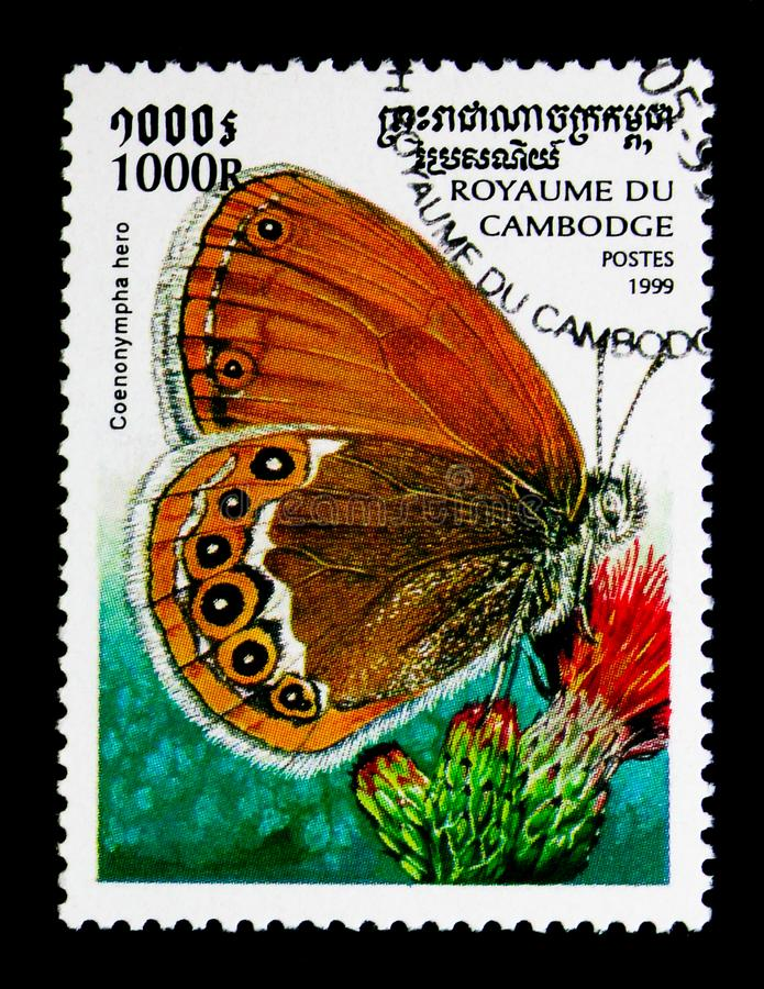 Scarce Heath Coenonympha hero, Butterflies serie, circa 1999. MOSCOW, RUSSIA - NOVEMBER 24, 2017: A stamp printed in Cambodia shows Scarce Heath Coenonympha hero stock photos