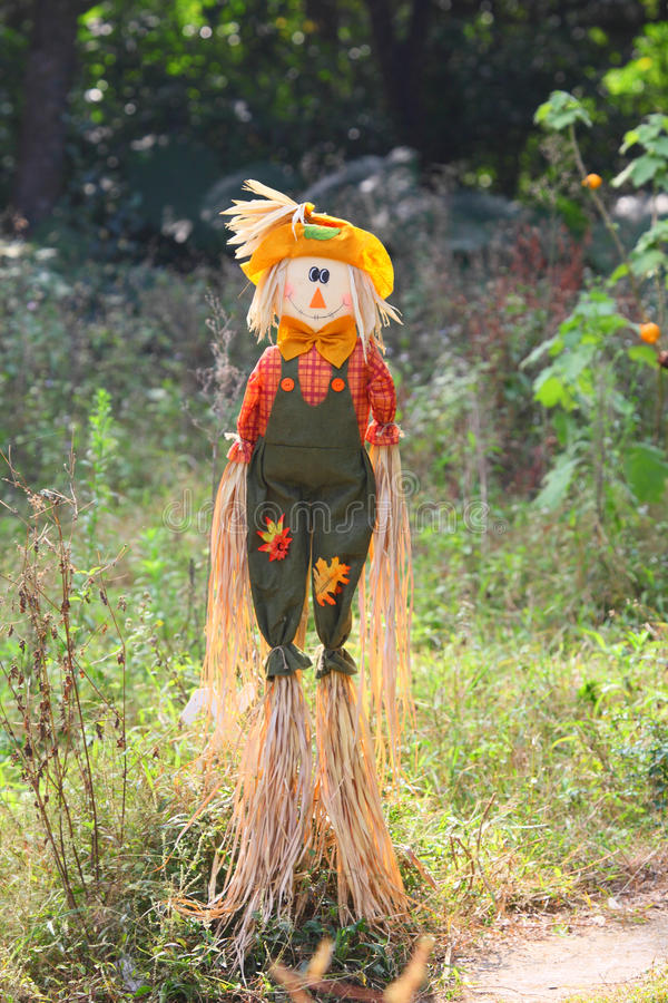 Scarecrow. Scare crow at the meadow stock image