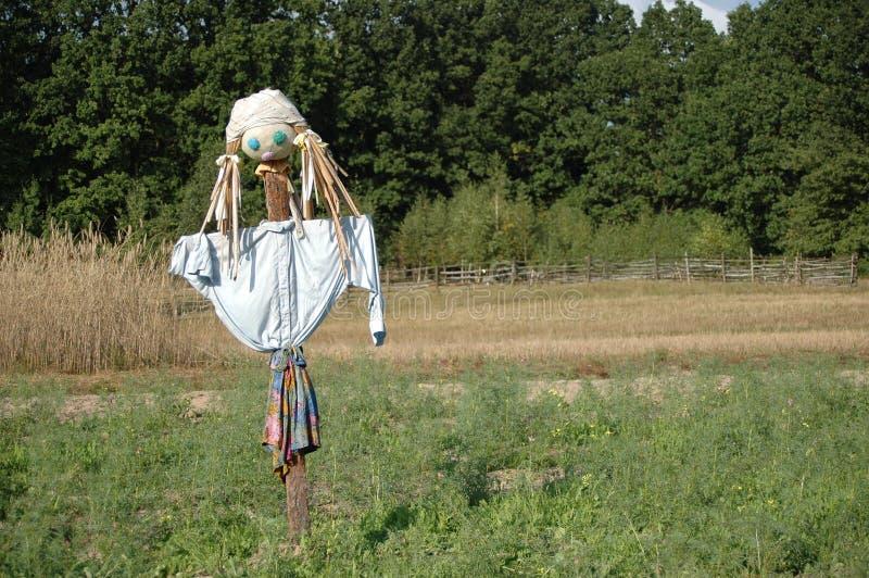 Download Scarecrow stock image. Image of portrait, birds, head, girl - 25037