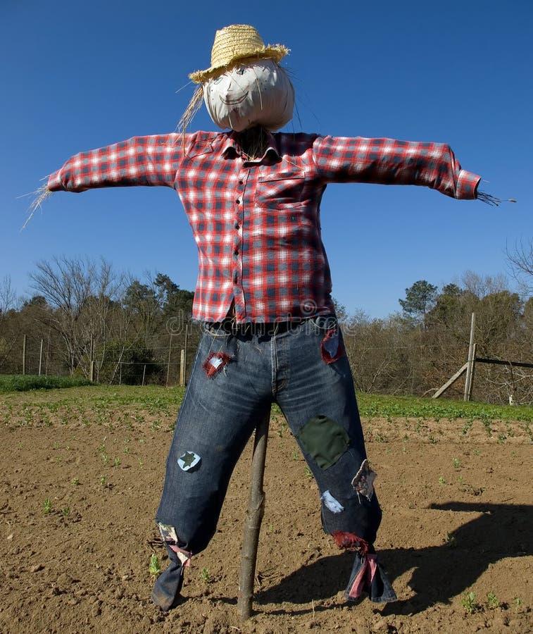 Free Scarecrow Stock Photo - 4342850