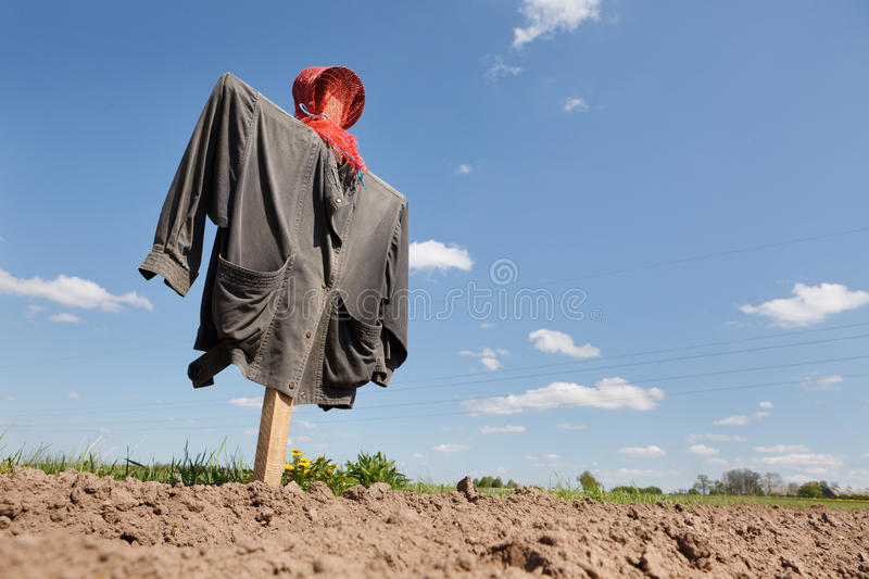 Download Scarecrow on the field stock image. Image of costume - 24906087