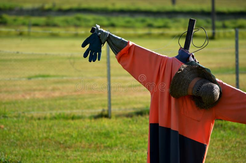 Scarecrow in field. Agricultural image of bird scaring equipment on farm royalty free stock image