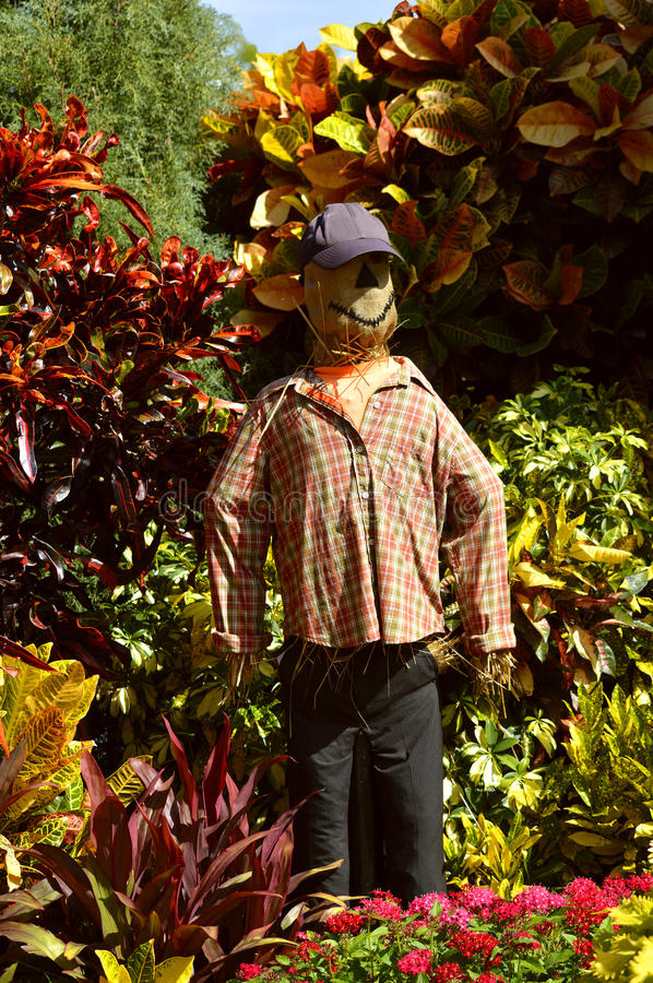 Download Scarecrow In A Garden Stock Photo - Image: 83713309
