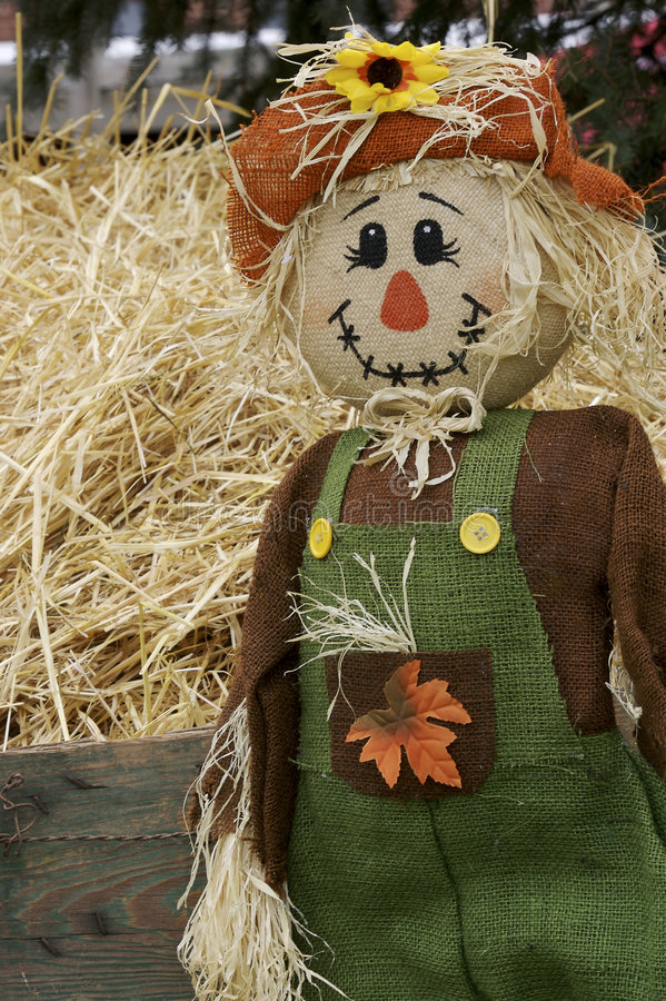 Free Scarecrow In The Fall Royalty Free Stock Photos - 1465628