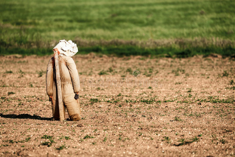 Scarecrow leaning on a post scarying birds stock photography