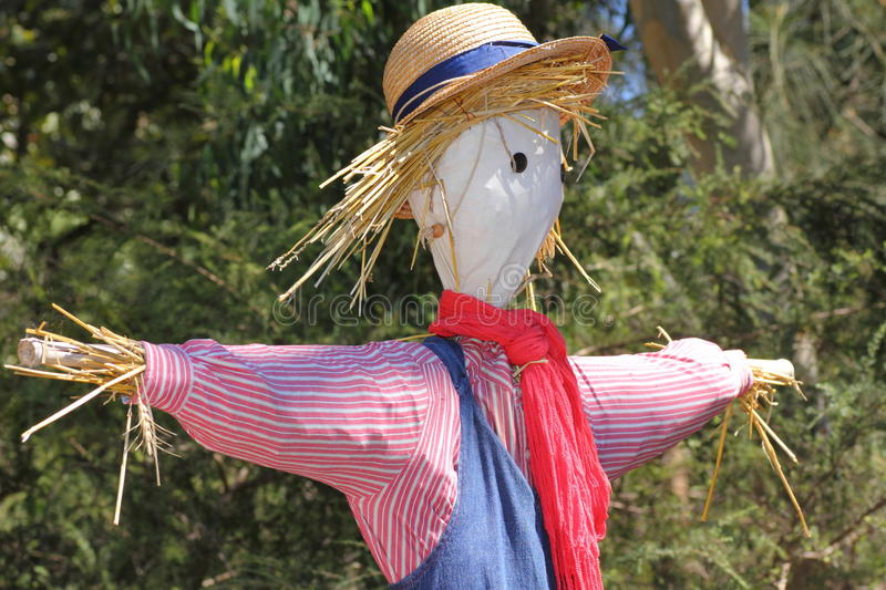 Sarecrow portrait. Colorfully clothed scarecrow in front of trees. Picture taken at fall in the Royal Botanic Gardens, Sydney, Australia royalty free stock photography