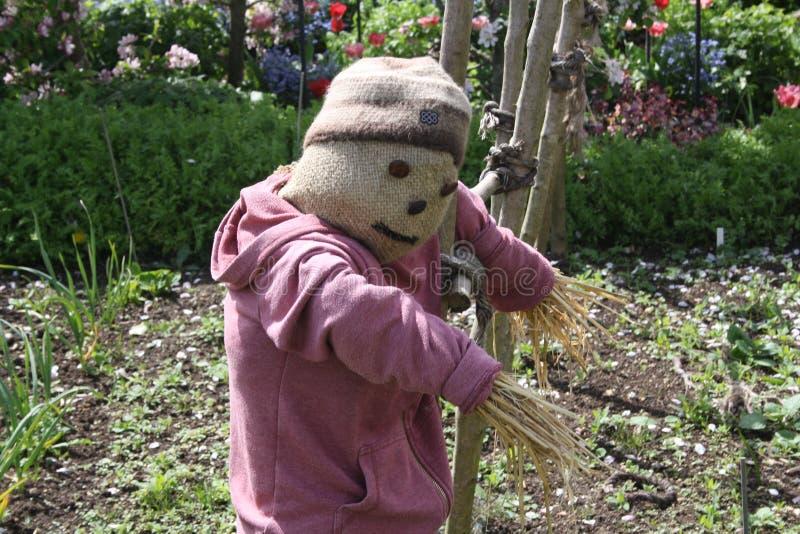 Scarecrow in a vegetable garden royalty free stock photo