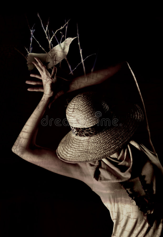Scarecrow woman royalty free stock images