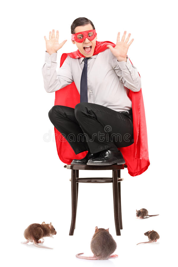 Scared man in superhero costume attacked by rats stock image