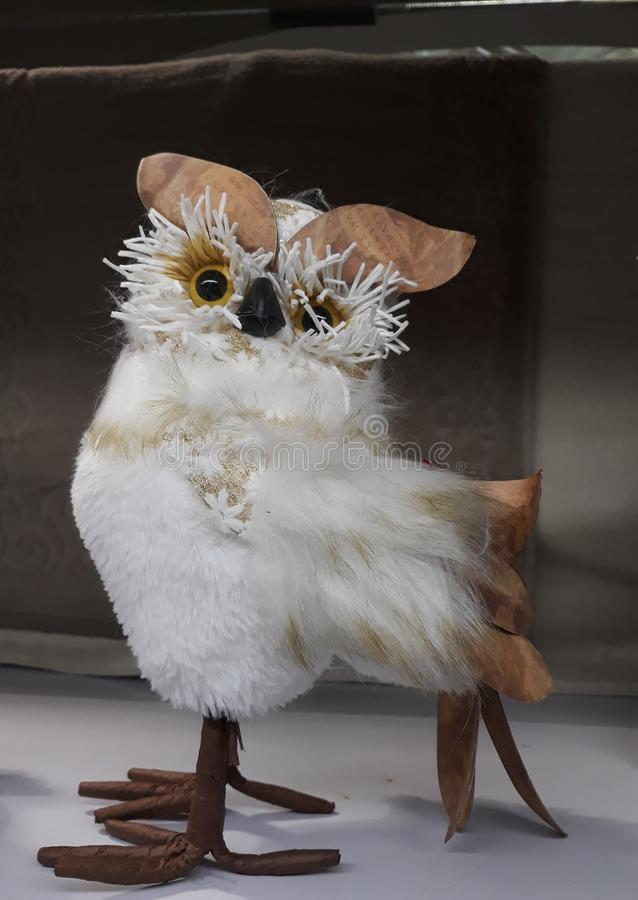 a scared owl stock image