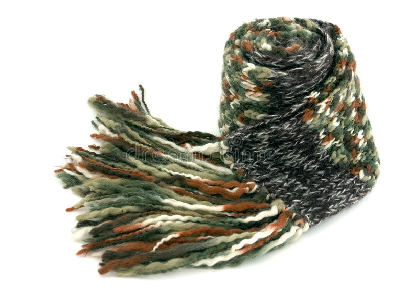 scarf royaltyfri fotografi