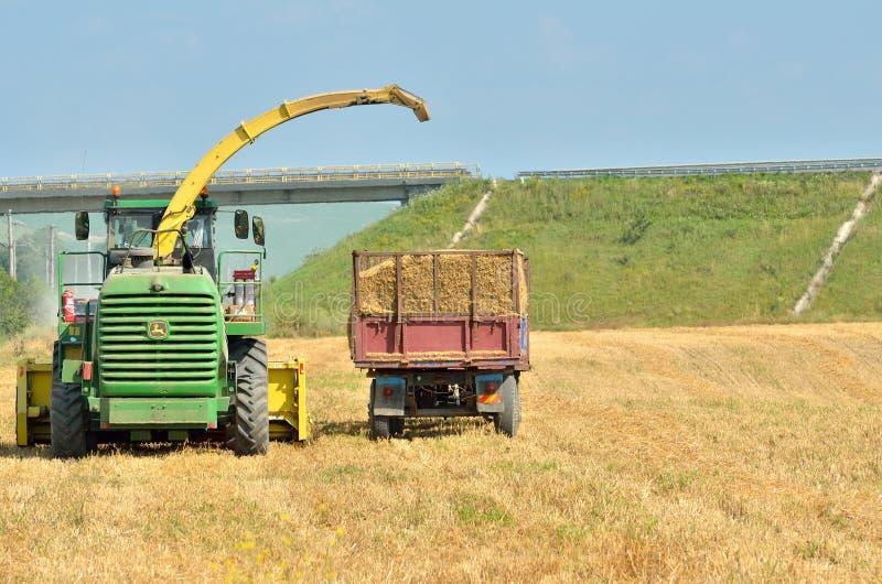 Scaricando il raccolto dopo la raccolta fotografie stock libere da diritti