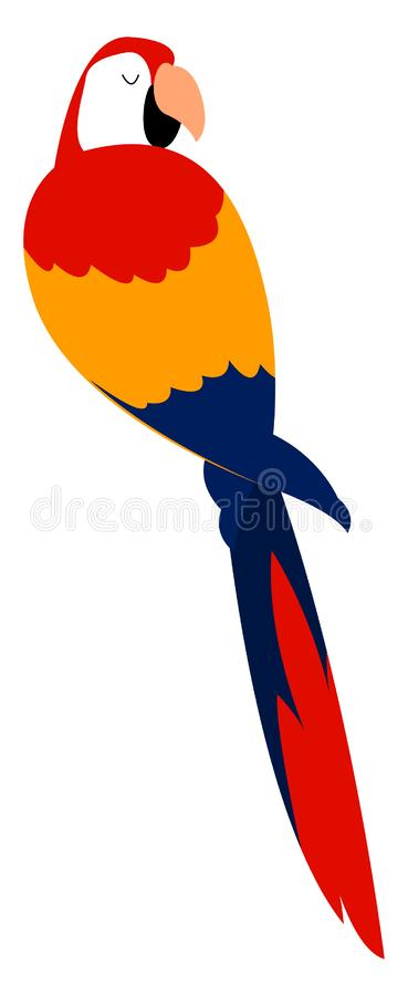 Scarlet macaw, illustration, vector stock illustration
