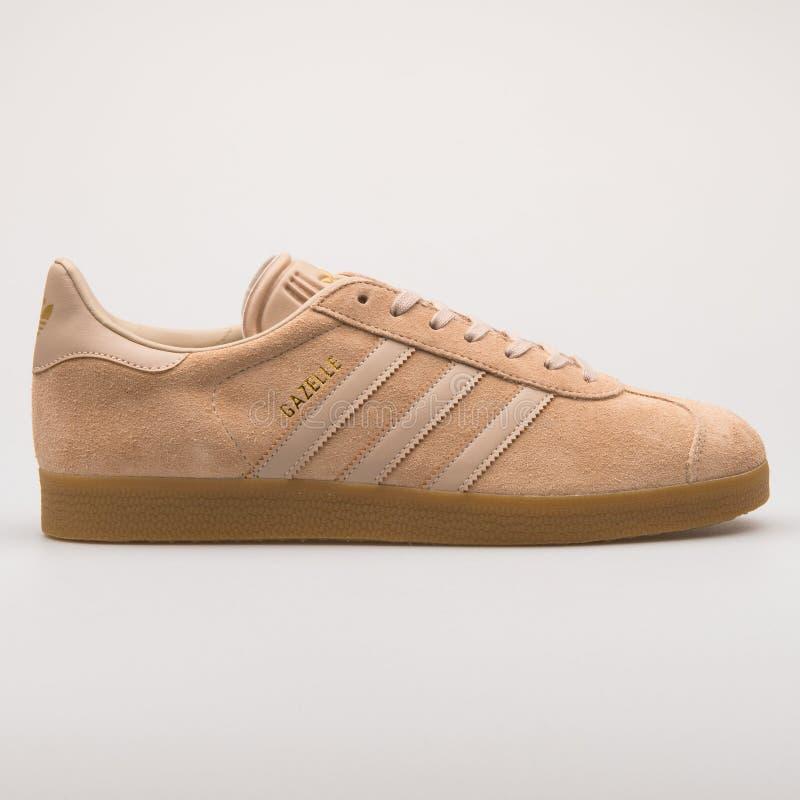 Scarpa da tennis beige della gazzella di Adidas immagini stock