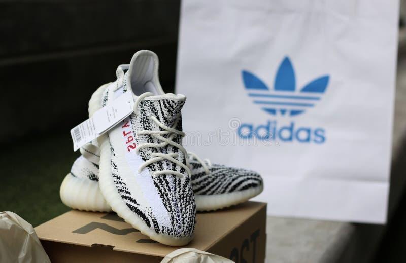 Scarpa da tennis delle scarpe di Adidas fotografia stock