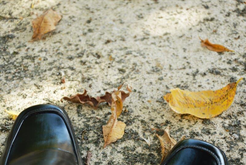 Scarpa di cuoio di affari neri sulla terra approssimativa del cemento immagine stock