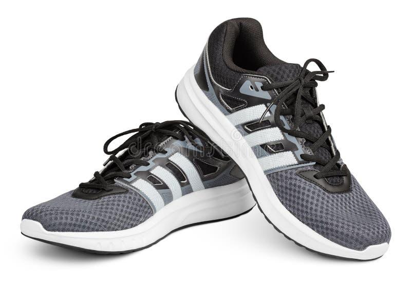 Scarpe da corsa, scarpe da tennis o istruttori di Adidas isolati su bianco immagini stock libere da diritti