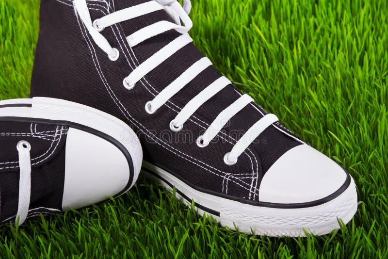 Scarpe da tennis nel campo di erba fotografia stock libera da diritti