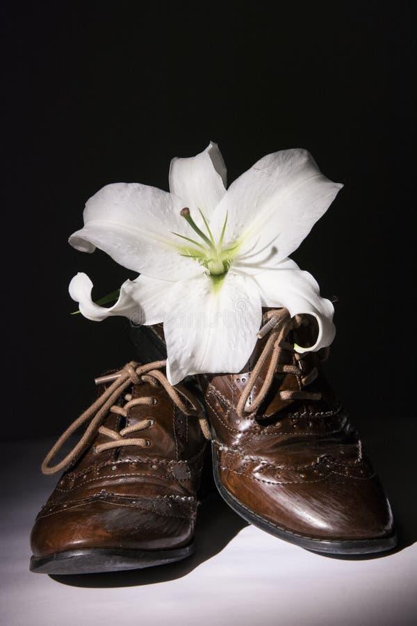Scarpe di Brown con i fiori fotografia stock