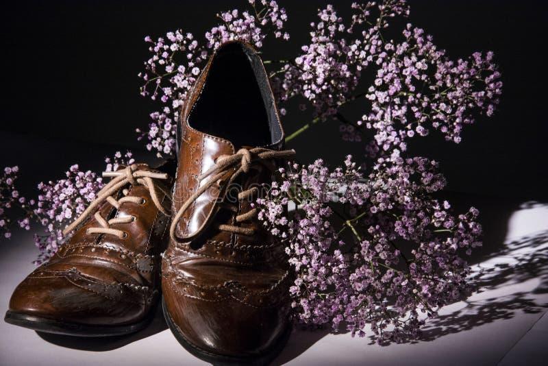 Scarpe di Brown con i fiori fotografia stock libera da diritti
