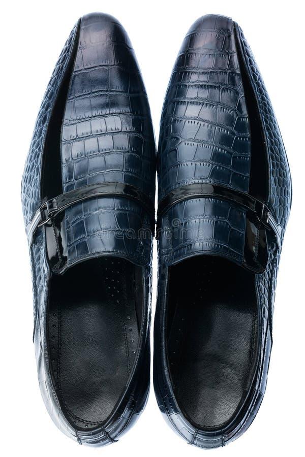 Scarpe di cuoio blu maschii classiche isolate su un bianco fotografia stock