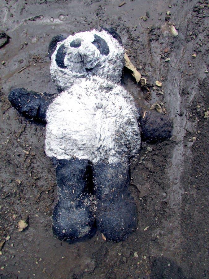 Scarso orsacchiotto immagine stock