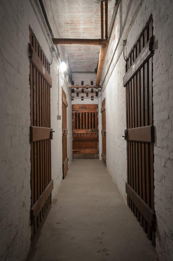 Scary basement royalty free stock image