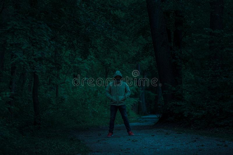 Scary dark male figure in a hoodie standing on the path in the forest with mysterious light coming behind him stock photography