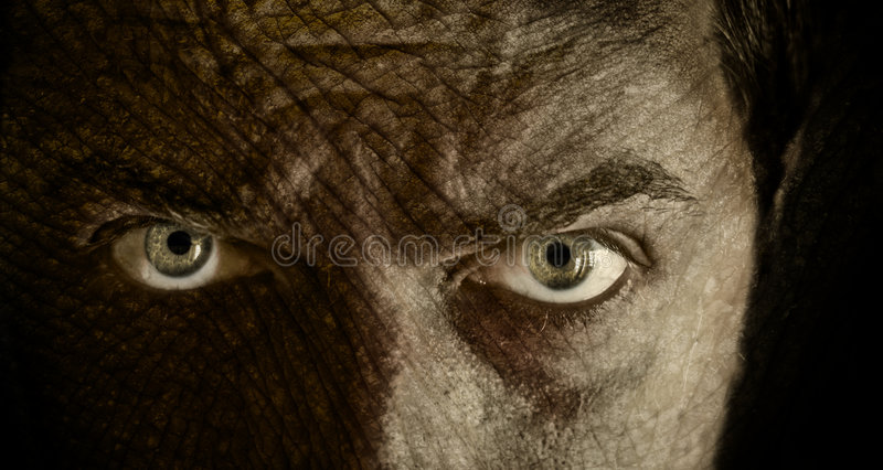 Scary face and eyes with cracked skin. Close-up on scary face with cracked skin royalty free stock photo