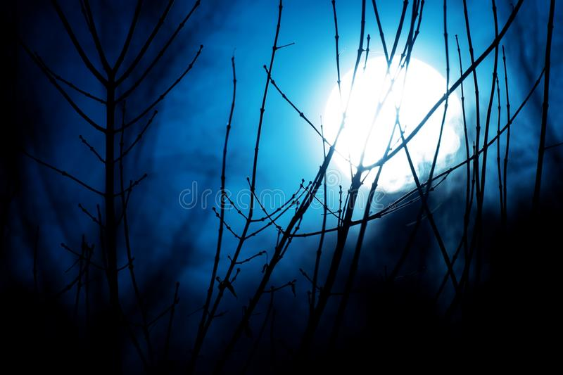 Scary, fantastic, mystical, bright, night moon during the full moon royalty free stock photos