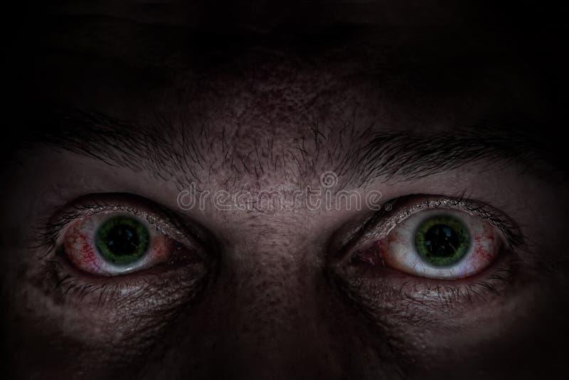 Scary green eyes royalty free stock photo