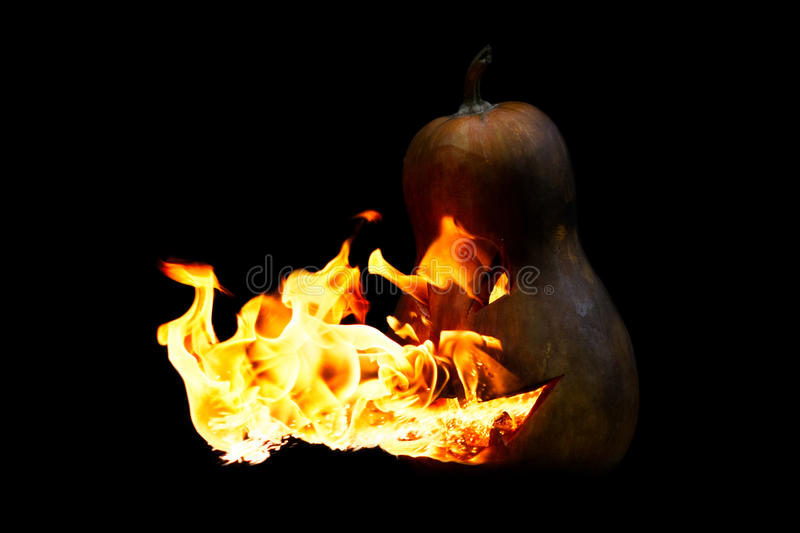 Scary Halloween pumpkin is spewing fire flame on black. Background stock images