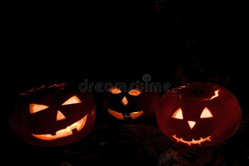 Scary Halloween pumpkins isolated on a black background. Scary glowing faces trick or treat. Scary Halloween pumpkins isolated on a black background. Scary royalty free stock photos