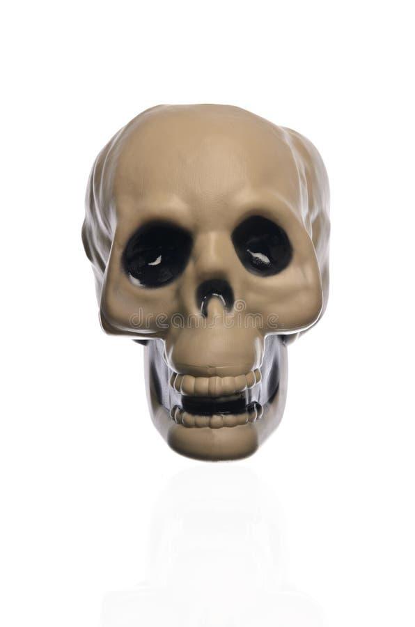 Scary Halloween Skull