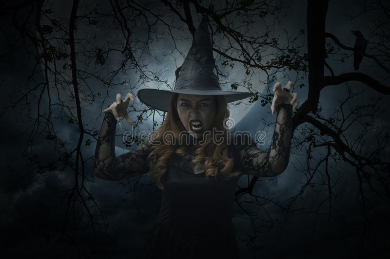 Scary halloween witch standing over dead tree, bird, full moon a royalty free stock image
