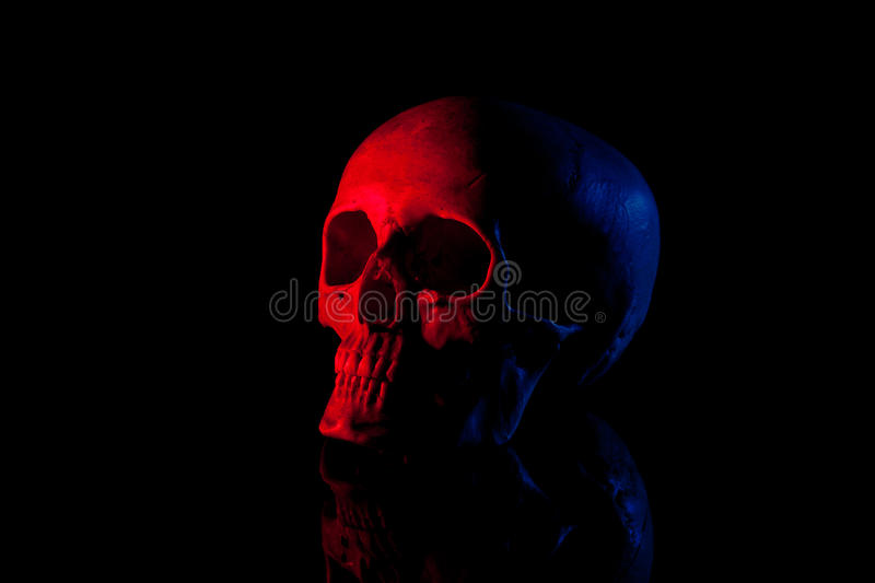 Download Scary human skill stock image. Image of background, light - 21675009