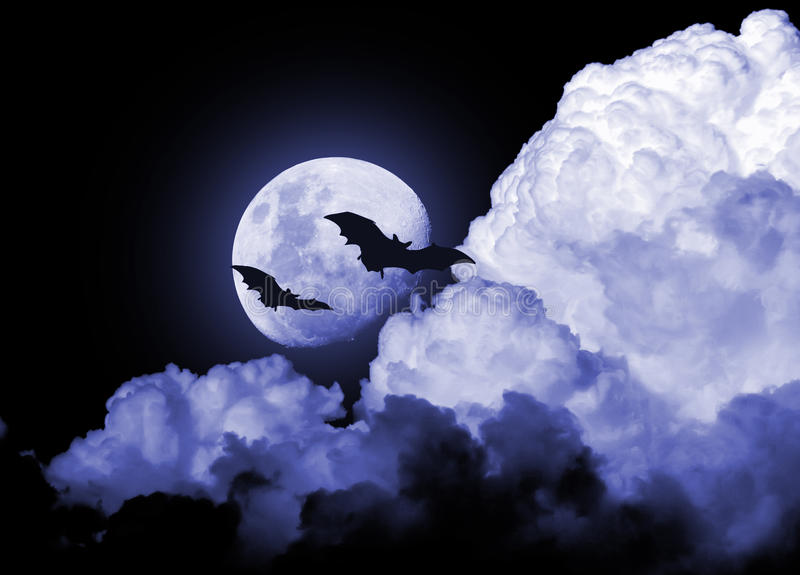 Scary lonely moon night bats. A scary night scene with dark gloomy clouds in front of the huge moon with a blue tint that makes the scene mysterious. There are royalty free stock photos