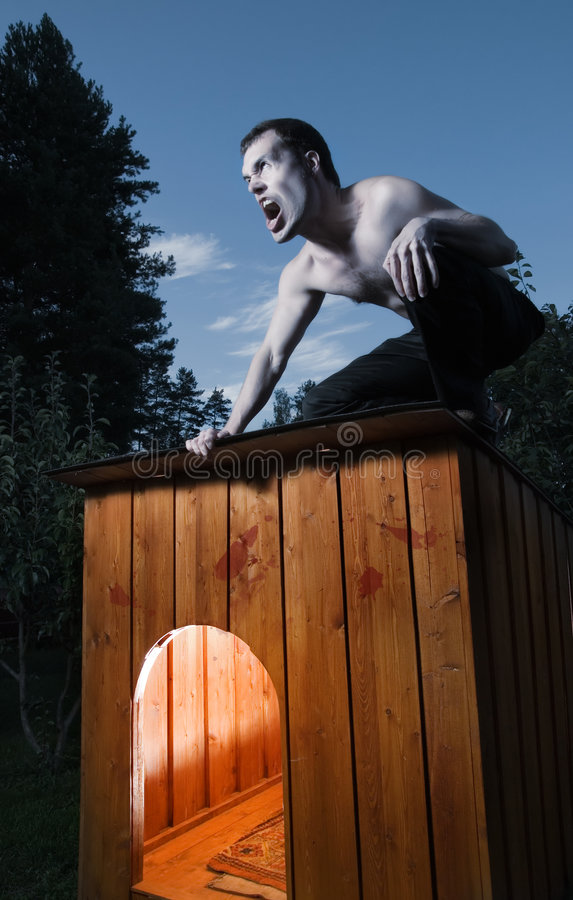 Scary man sitting on kennel royalty free stock image