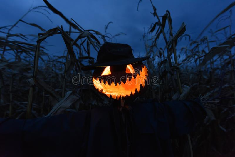 Scary pumpkin scarecrow in a hat royalty free stock photography