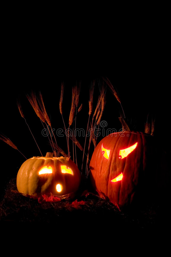 Scary Pumpkins! royalty free stock photos