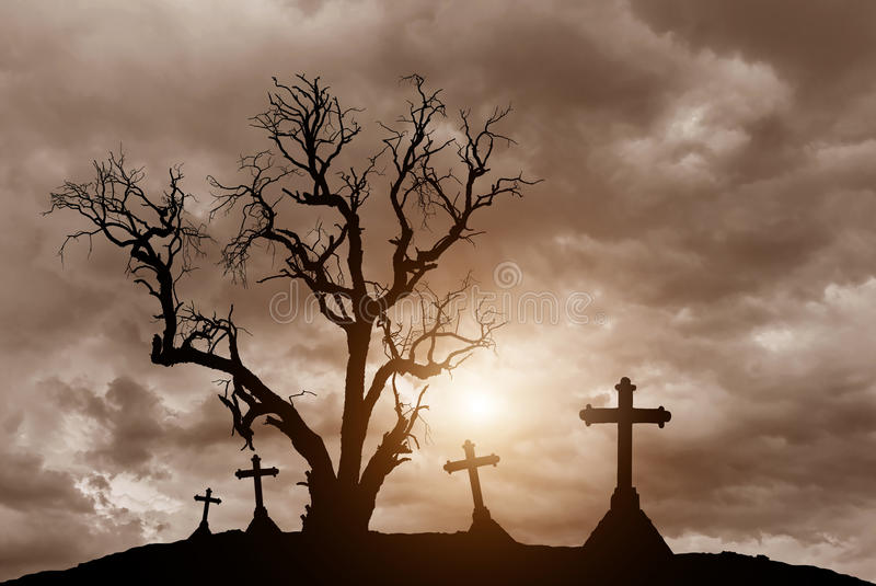 Scary silhouette dead tree and spooky crosses with Halloween concept. Scary silhouette dead tree and spooky silhouette crosses in mystic graveyard with Halloween stock image