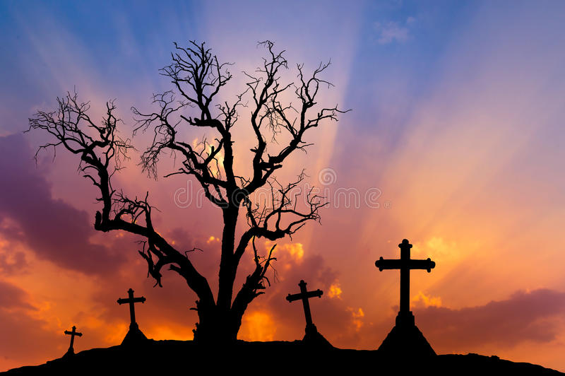 Scary silhouette dead tree and spooky silhouette crosses with halloween concept. Scary silhouette dead tree and spooky silhouette crosses in mystic graveyard stock photos