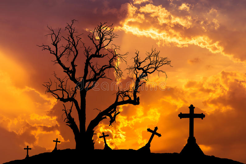 Scary silhouette dead tree and spooky silhouette crosses in mystic graveyard. With halloween concept background royalty free stock photography