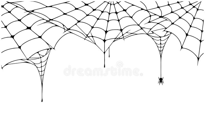 Scary spider web background. Cobweb background with spider. Spooky spider web for Halloween decoration stock illustration