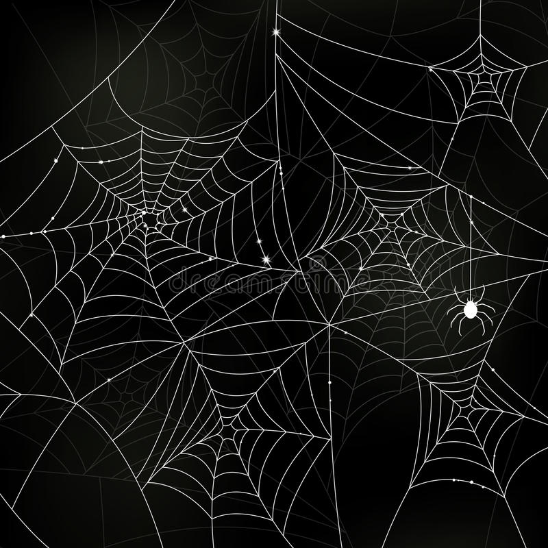 Download Scary Spider Webs Royalty Free Stock Images - Image: 33951959