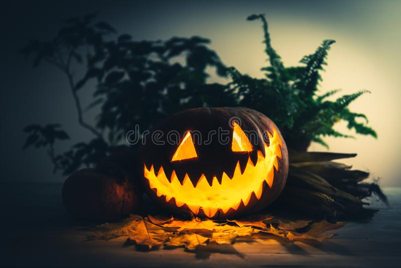 Scary traditional smiley pumpkin lantern royalty free stock images