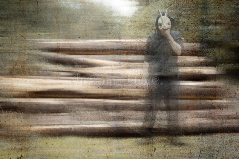 A scary, weird, hooded figure, holding a rabbit mask to his face. next to a pile of logs in a forest. With a blurred, grunge, vint royalty free stock photos