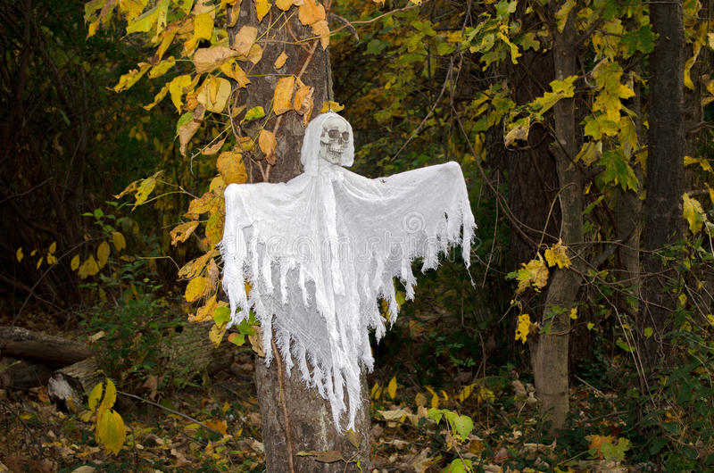 Scary white ghost in the trees. A scary white ghost seems to fly out of a dark autumn woods on Halloween stock photo