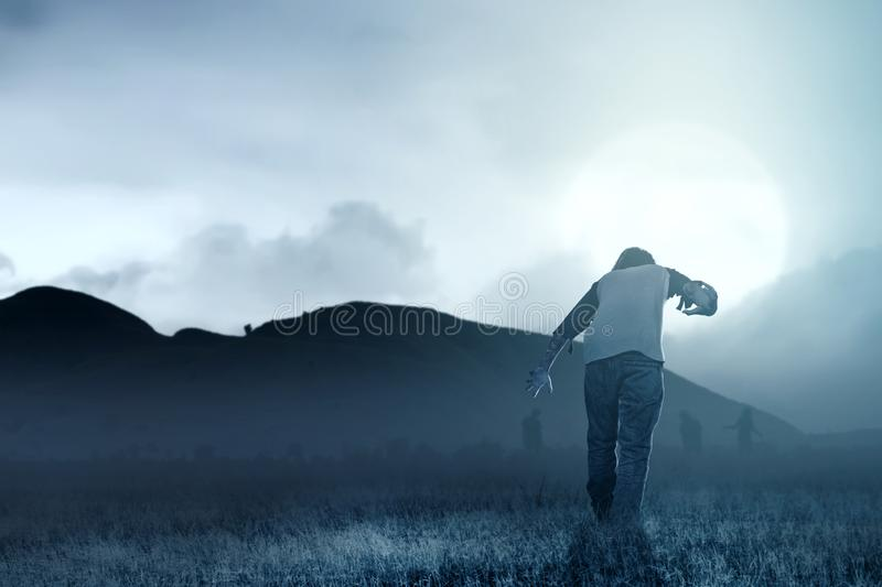 Scary zombies with blood and wound on his body walking around on the grass field. With moonlight. Halloween concept royalty free stock photos